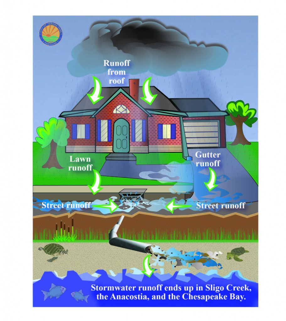 Stormwater infographic